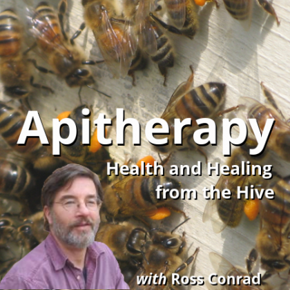 Apitherapy Course Health and Healing From the Hive with Ross Conrad Organic Beekeeping